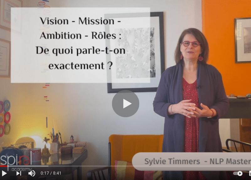 Vision, Mission, Ambition, roles